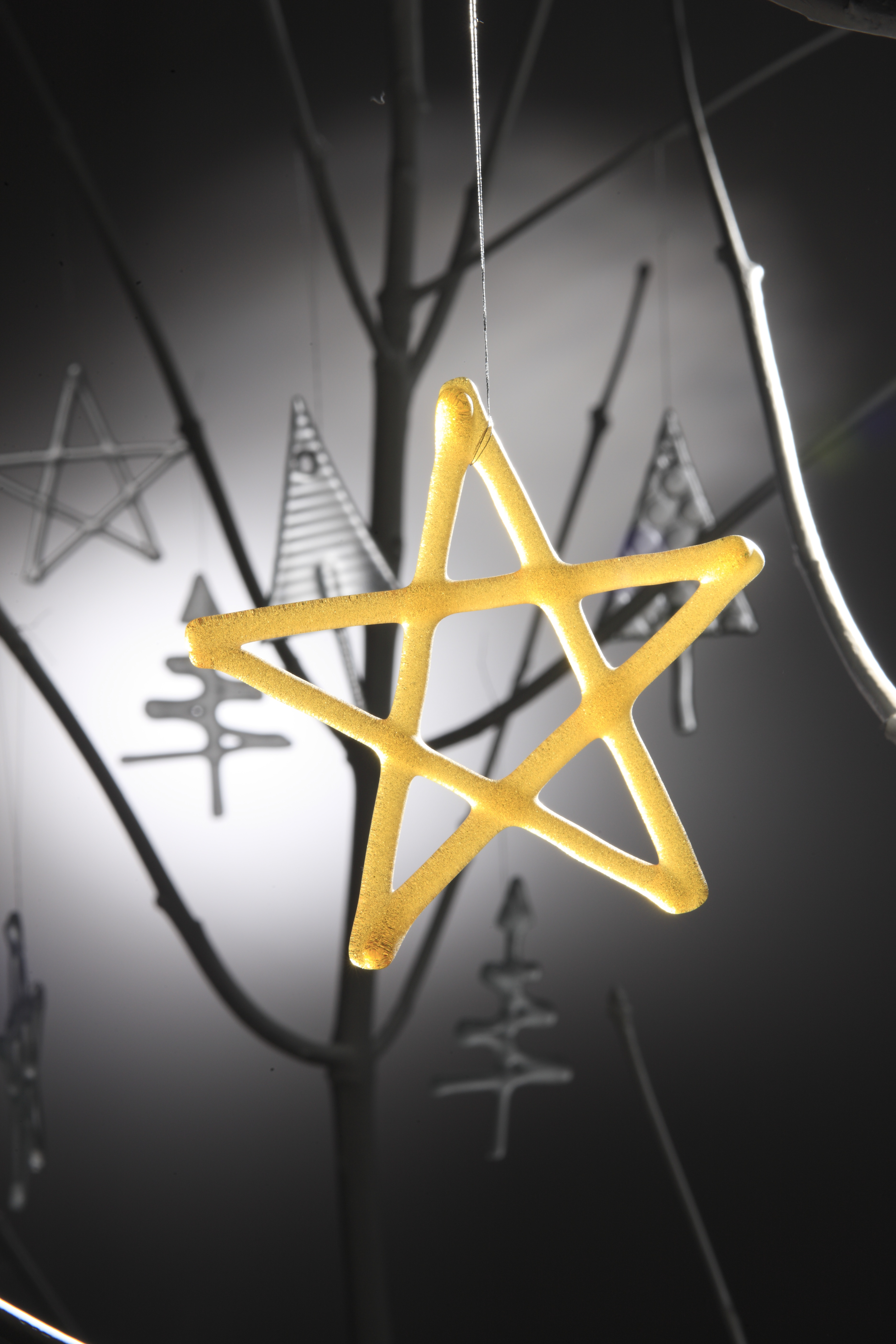 Gold Star Christmas Decoration (Picture by Simon Bruntnell)
